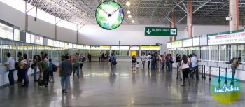 Passagens de ônibus: direitos e deveres dos viajantes