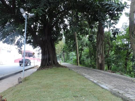 Obras no Parque Linear avançam
